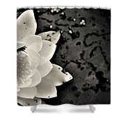 Water Lily And Fly Shower Curtain