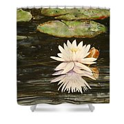 Water Lily And Pads Shower Curtain
