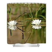 Water Lily Duet Shower Curtain