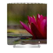 Water Lily - Id 16235-220248-4550 Shower Curtain