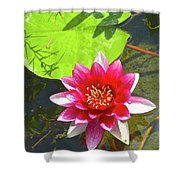 Water Lily In Pond Shower Curtain