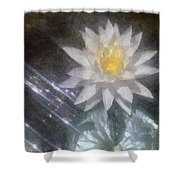 Water Lily In Sunlight Shower Curtain