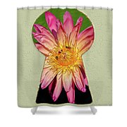 Water Lily Keyhole Shower Curtain