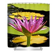Water Lily With Dragonfly Shower Curtain