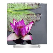 Water Lily With Rain Drops Shower Curtain