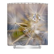 Water Pearl Shower Curtain