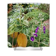 Water Plants And Flower Shower Curtain
