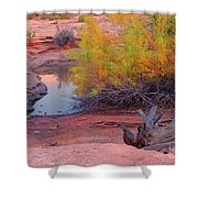 Magic Puddle At Canyon Lands Shower Curtain
