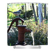 Water Pump Shower Curtain