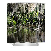 Water Reeds And Spanish Moss Shower Curtain
