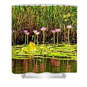 Water Reflecting Pinkish Waterlilies Shower Curtain