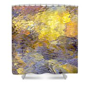 Water Reflection 1144 Shower Curtain