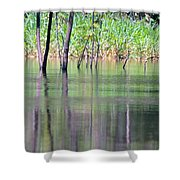 Water Reflections On Amazon River Shower Curtain