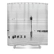 Water Walking Birds Shower Curtain