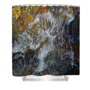 Water Whimsy 169 Shower Curtain