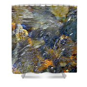 Water Whimsy 173 Shower Curtain