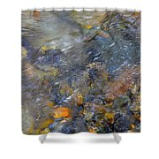 Water Whimsy 176 Shower Curtain