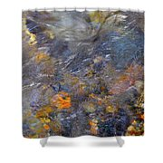 Water Whimsy 177 Shower Curtain