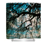Water Willow Shower Curtain