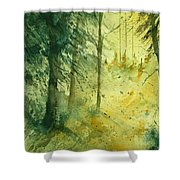 Watercolor  030106 Shower Curtain