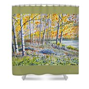 Watercolor - Colorado Autumn Forest And Landscape Shower Curtain