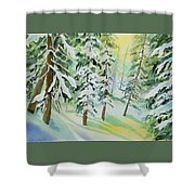 Watercolor - Colorado Winter Tranquility Shower Curtain