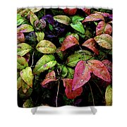 Watercolor Colorful Leaves After A Shower 1771 W_2 Shower Curtain