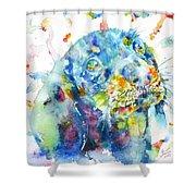 Watercolor Dachshund Shower Curtain