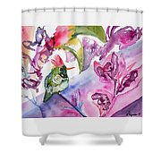 Watercolor - Frilled Coquette Hummingbird With Colorful Background Shower Curtain