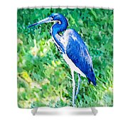 Watercolor Heron In Grass Shower Curtain