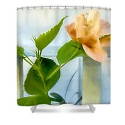 Watercolor Hibiscus Shower Curtain