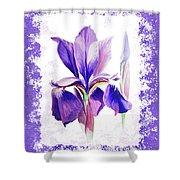 Watercolor Iris Painting Shower Curtain