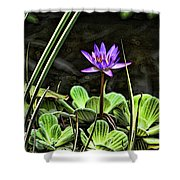 Watercolor Lily Shower Curtain