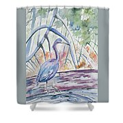 Watercolor - Little Blue Heron In Mangrove Forest Shower Curtain
