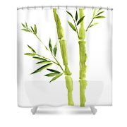 Bamboo Stick Wall Paper Art, Watercolor Living Room Decor Illustration, Green Bamboo Leaves Painting Shower Curtain