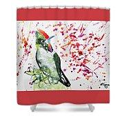 Watercolor - Rainbow Bearded Thornbill Shower Curtain