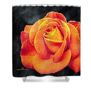 Watercolor Rose Shower Curtain