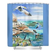 Watercolor - Seabirds Of The North Atlantic Shower Curtain