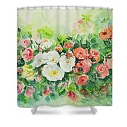 Watercolor Series 4 Shower Curtain