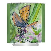 Watercolor - Small Butterfly On A Flower Shower Curtain