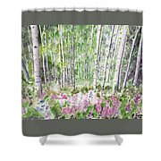 Watercolor - Summer Aspen Glade Shower Curtain