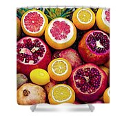 Watercolor Superfood Combo Shower Curtain by Celestial Images