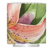 Watercolor Tiger Lily Dance Of Petals Close Up  Shower Curtain