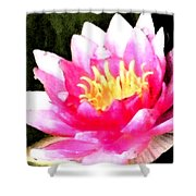 Watercolor Waterlily Shower Curtain