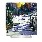 Watercolor3538 Shower Curtain