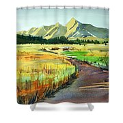 Watercolor4476 Shower Curtain