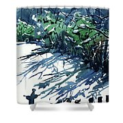 Watercolor4597 Shower Curtain