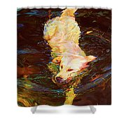 Waterdance Shower Curtain