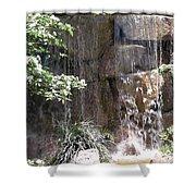 Waterfall 13 Shower Curtain