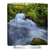 Waterfall At Shepperds Dell Falls Shower Curtain